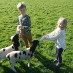 Family farm holiday Cornwall