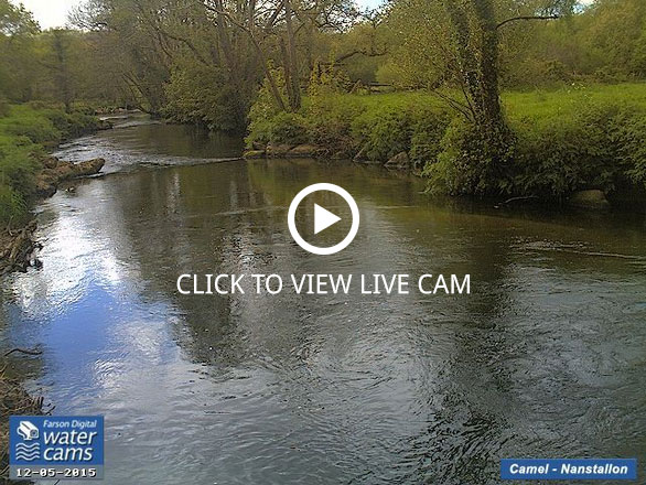 Live River Cam Cornwall