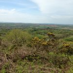 views-bodmin-moor