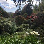 Visit Cornwall gardens