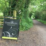 Camel Trail Cornwall