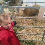children at the Royal Cornwall Show
