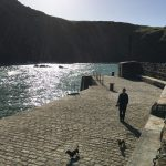 National Trust Mullion Cove