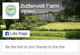 Follow Butterwell Farm on Facebook