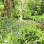 Nature reserve Cornwall